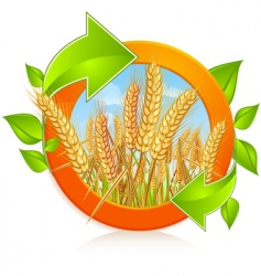 circle with ripe wheat vector image
