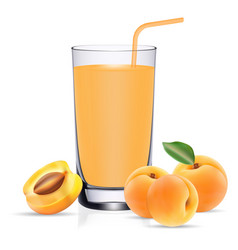 apricot juice set with fresh fruits and leaves vector image