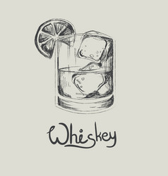 hand drawn whiskey in glass with ice isolated vector image