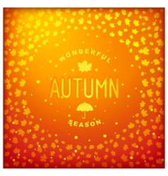 Autumn lettering label design vector