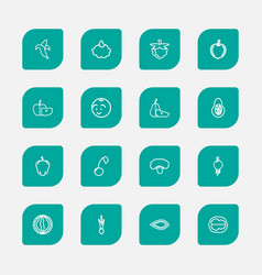 Set of 16 editable kitchenware outline icons vector