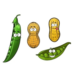 Cartoon opened green pea pods and peanuts in vector