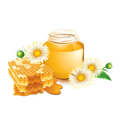 Honey and honeycomb vector
