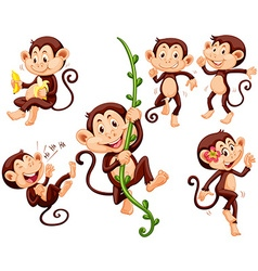 Little monkeys doing different things vector