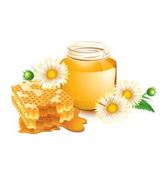 Honey and honeycomb vector