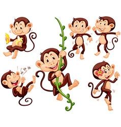 Little monkeys doing different things vector