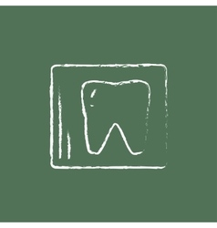 X-ray of the tooth icon drawn in chalk vector