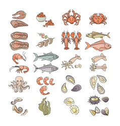 Colorful seafood icon set vector
