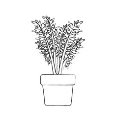 Monochrome blurred silhouette of carrot plant in vector