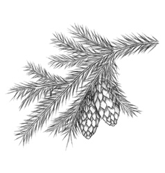 Realistic vintage engraving wreath of fir branches vector