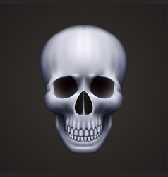 human skull isolated on black vector image