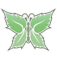 Mint butterfly vector