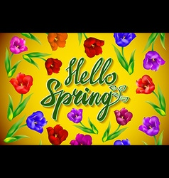 Hello spring poster design in realistic colorful vector