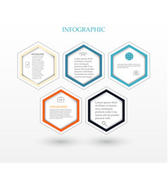 Infographic five hexagons vector