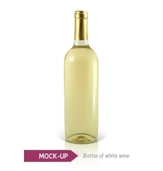 Bottle of white wine vector