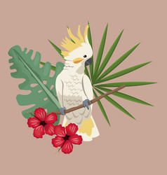 Cockatoo bird exotic hibiscus palm leaves vector