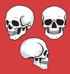 Skull set in hand drawing style vector