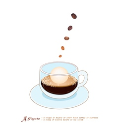 A Cup of Affogato Coffee with Ice Cream vector image vector image