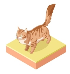 Isometric standing cat icon vector image vector image