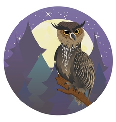 Owl in night forest vector