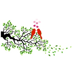 Tree with birds in love vector image