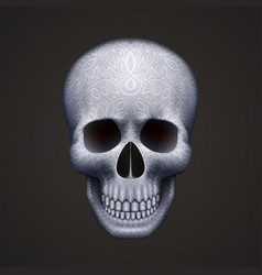 human skull isolated on black with ornament vector image