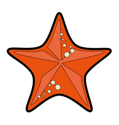 Sea star icon vector