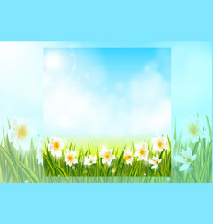 Spring background with daffodil narcissus flowers vector