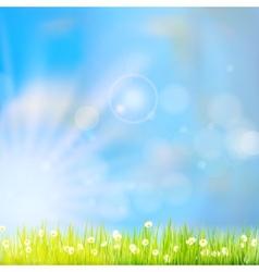 Summer grass in sun light eps 10 vector