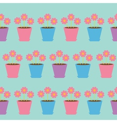 Pink daisy chamomile flower set in pot camomile vector