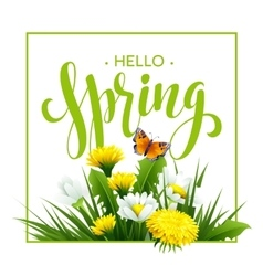 Inscription spring time on background with spring vector