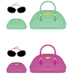 Female bags beauticians and sun glasses vector