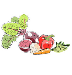 hand draw colorful different vegetables vector image