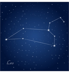 Leo constellation zodiac vector