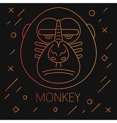 Monkey Lines Yellow vector image vector image