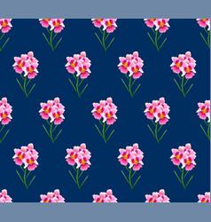 pink vanda miss joaquim orchid on indigo blue vector image vector image