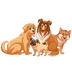 Different type of cute puppy dogs vector image