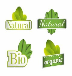 Eco Bio Natural Organic Icon Set vector image