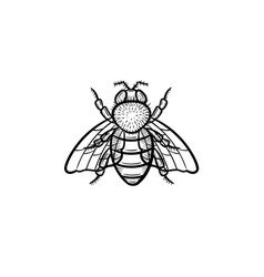 fly hand drawn sketch icon vector image