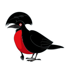 Cartoon smiling umbrellabird vector