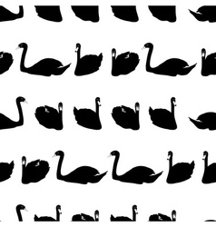 Swans black shadows silhouette in lines pattern vector