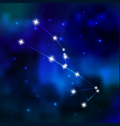 Zodiac constellation in the sky vector image vector image