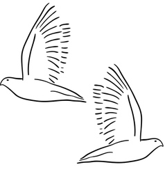 Peace dove set vector