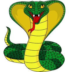 king cobra vector image