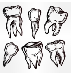 Teeth set in flash tattoo style vector
