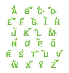 Green herbal alphabet with leaves vector image