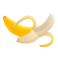 single fresh pilled banana fruit isolated on a vector image vector image