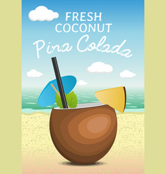 Tropic coconut fresh cocktail pina colada on a vector