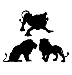 Silhouettes of lions in three different poses vector