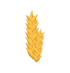 wheat ears icon vector image